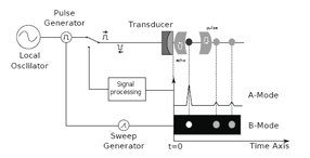 Schematic diagram of a pulseecho experiment hardware. Vol. 36, Iss.4, The Technology and Performance of 4D Ultrasound.